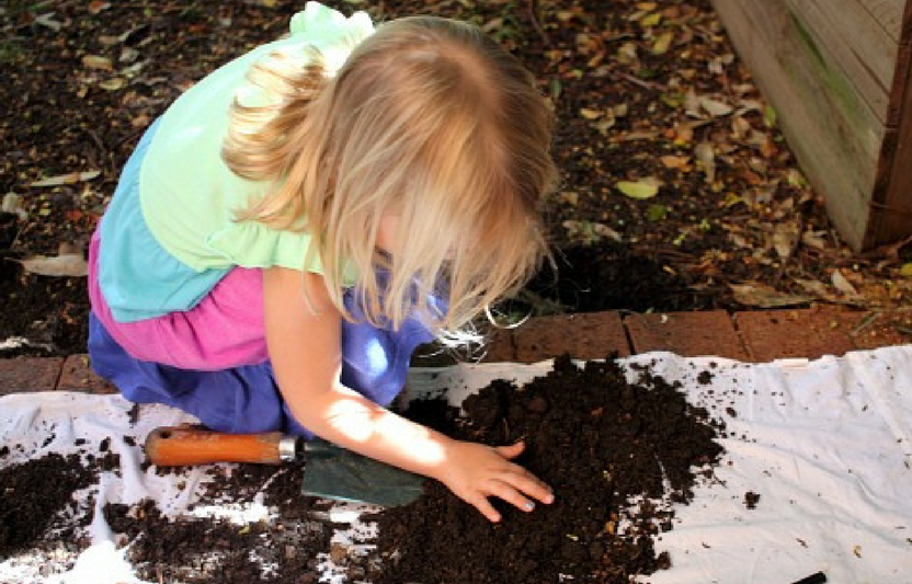 Your little ones will love playing and exploring their way through this nature experiment—in your own backyard!