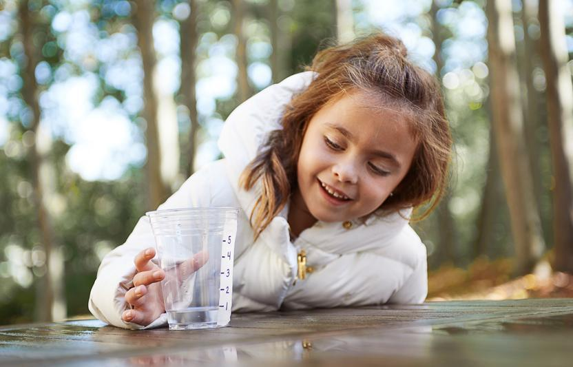 A great mix of science and discovery goes into making this meter, which your budding ecologist can use to track rainfall.