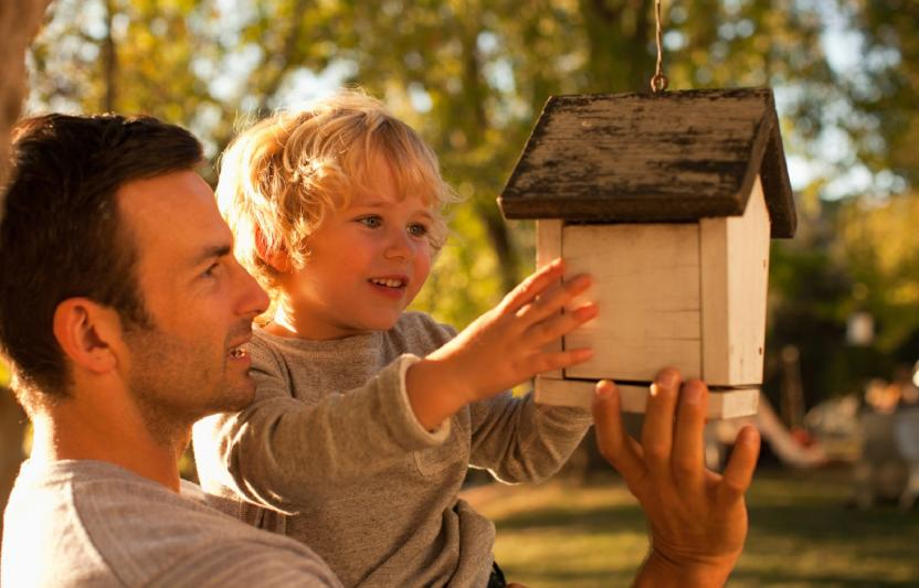 dad and son looking at birdhouse