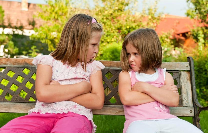 Suprising Benefits of Sibling Squabbles