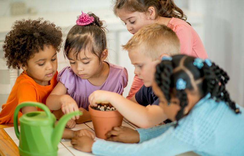 What Really Matters in Kindergarten
